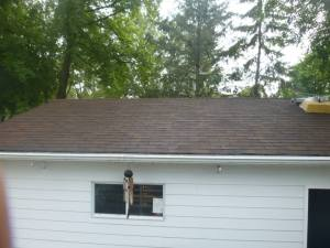 roof cleaning treatment