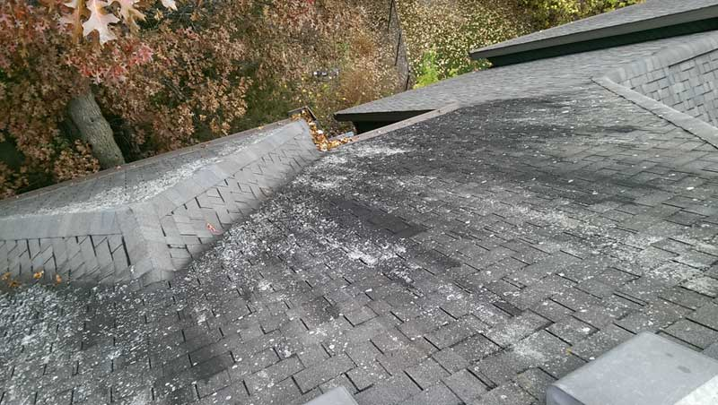 roof cleaning waite park