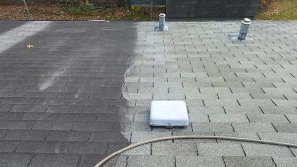 roof cleaning in st. cloud